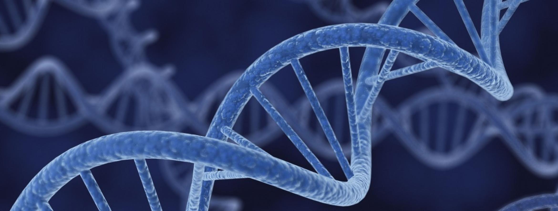 BRCA Gene Mutations - Reversing the Sentence | New Jersey